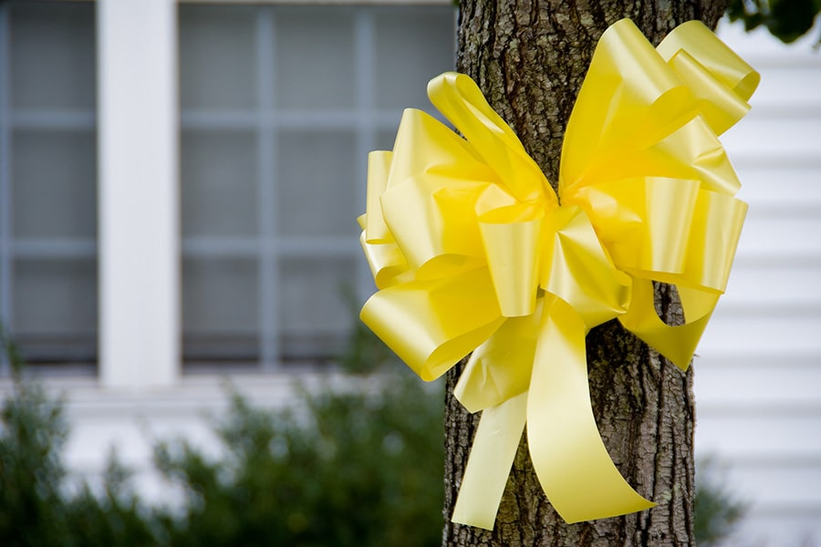 A yellow ribbon tied to a tree